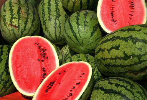 بالصور بعض الدلالات التي تثبت لك جودة البطيخ