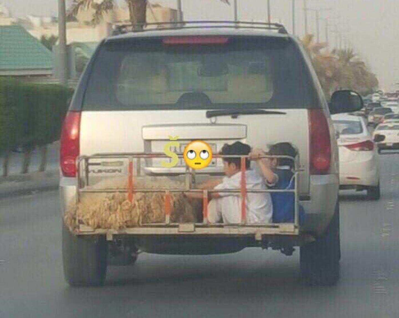 #صورة اب يضع أبنائه بمكان خطر من أجل الضحية ومطالبات بمحاسبته