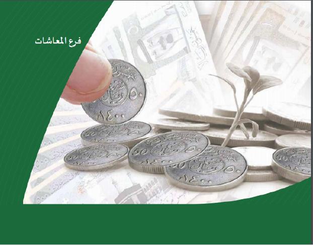 إفلاس التأمينات يثير مخاوف السعوديين على رواتب التقاعد