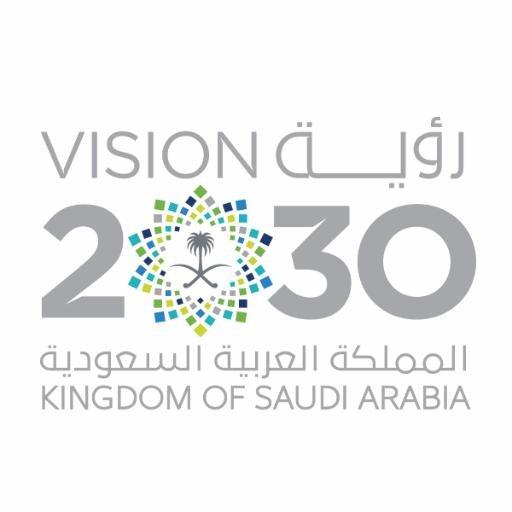 مجلس الشؤون الاقتصادية يكشف عن 10 برامج جديدة لتحقيق رؤية 2030