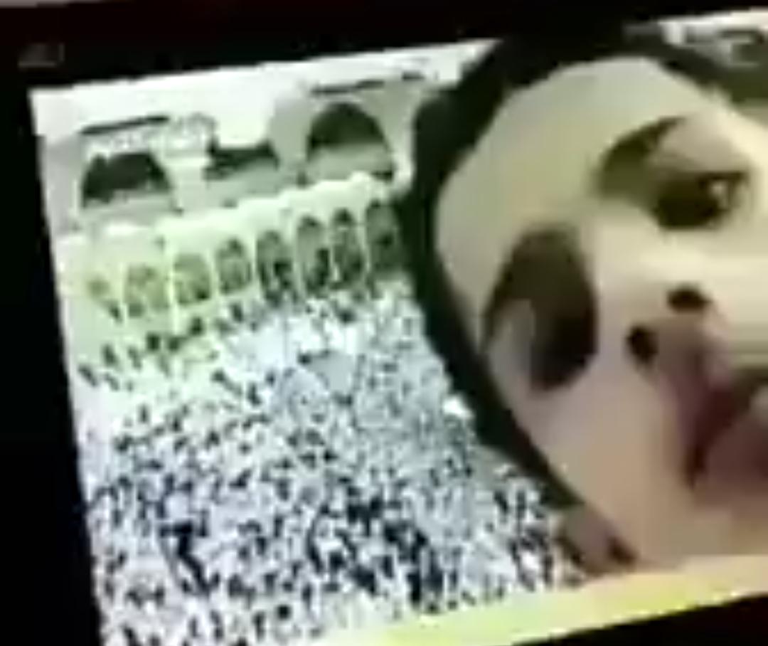 """شاهد """"القبض على مراهق ازعج مخرج صلوات الحرم المكي في التلفزيون السعودي ينطنط قدام الكاميرات"""