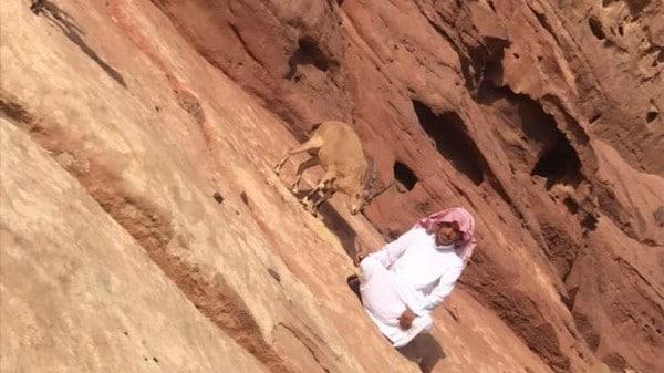 صورة على التواصل تقلب حياة شاب سعودي رأسا على عقب.. وهكذا فضل حياة الجبال قبل 3 أعوام! -صور