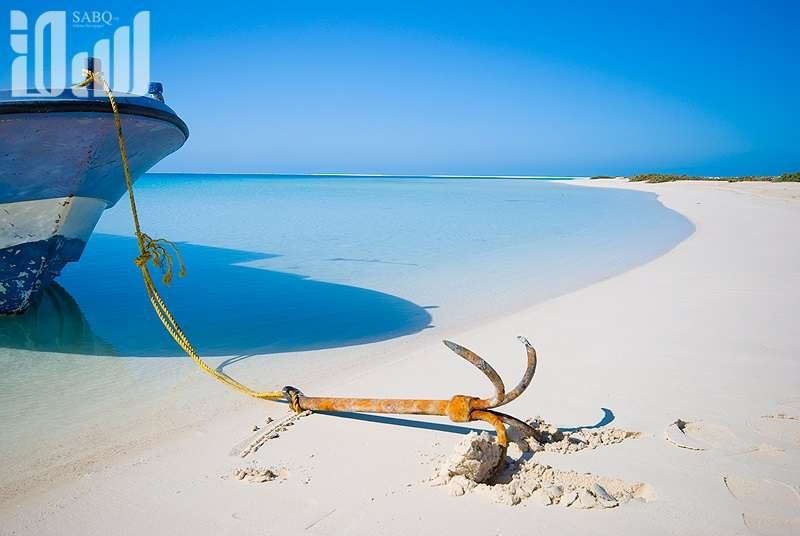 جبنا لكم صور الطبيعة والجزر المقرره لصالح #مشروع_البحر_الأحمر