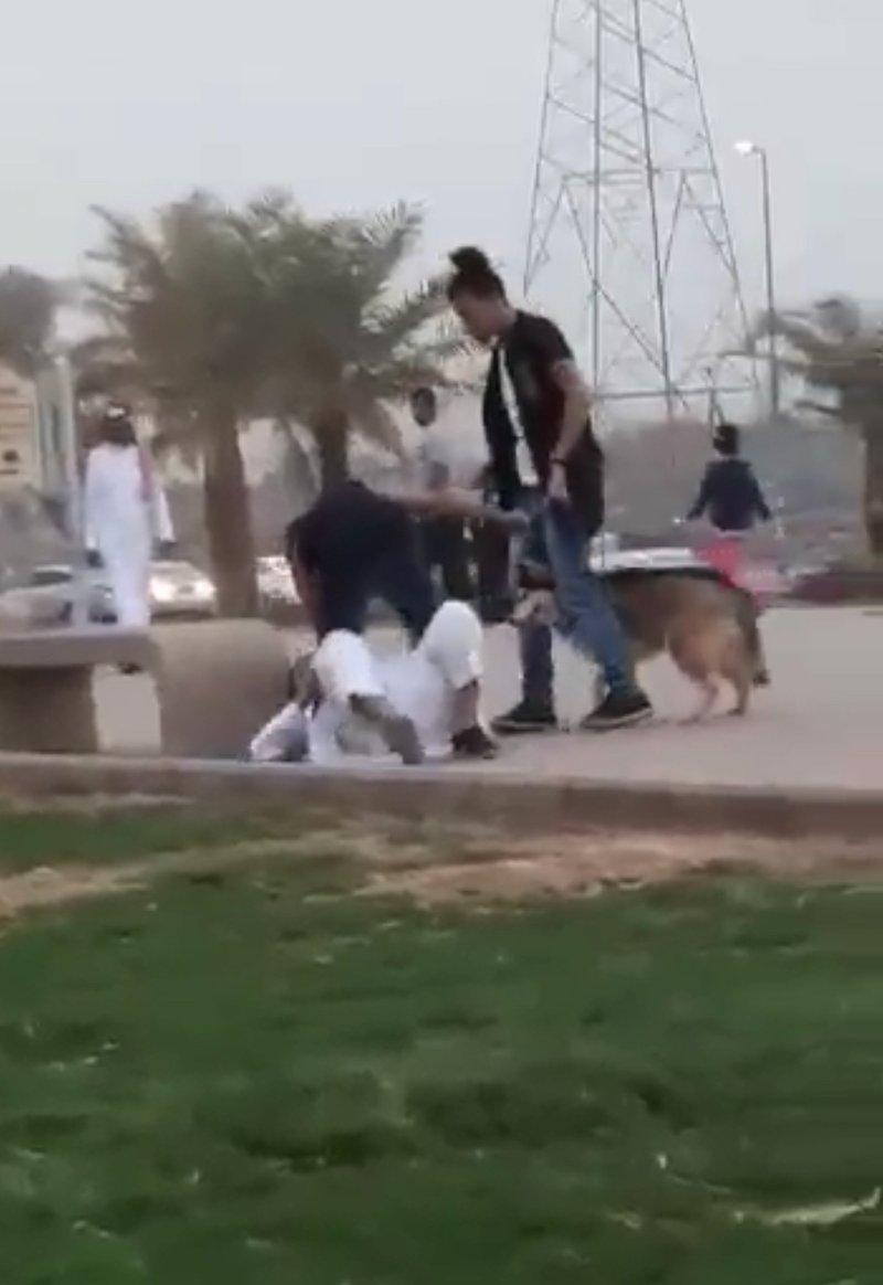 """مصورة مقطع """"مروعي المارة بالكلاب"""" في ممشى بالمدينة المنورة تكشف عن سبب توثيقها المشهد"""