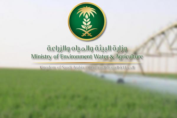 """""""البيئة"""" تعلن عن وظائف شاغرة للسعوديين"""