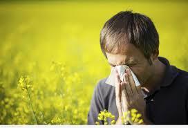 كيف تتغلب على احتقان الأنف وتهيج العين خلال الربيع؟