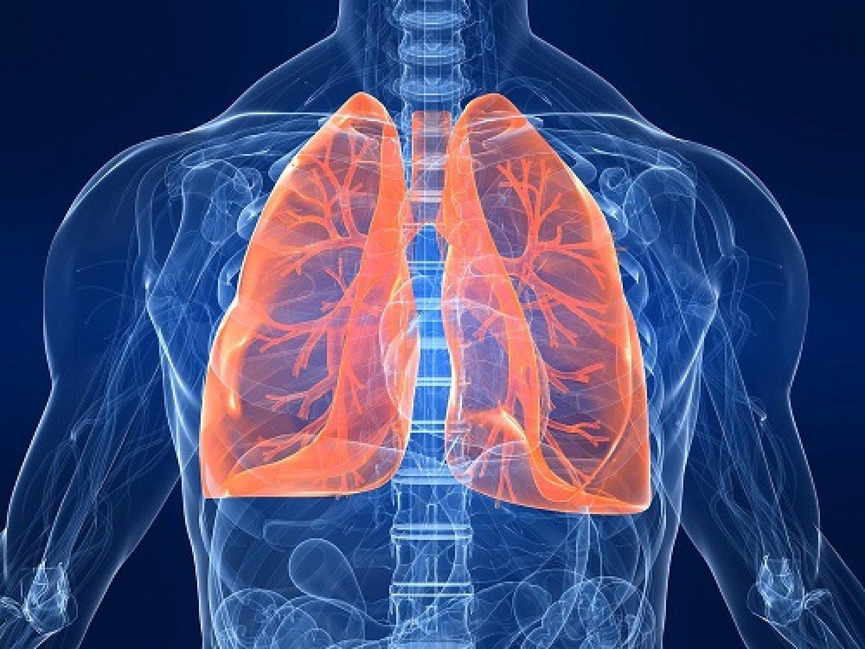 لتنظيف الرئة من الغبار والسموم.. تناول هذه الأطعمة والمشروبات