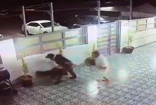 شاهد.. كيف تعامل رجل مع كلب اقتحم منزله في الكويت وروع الأطفال