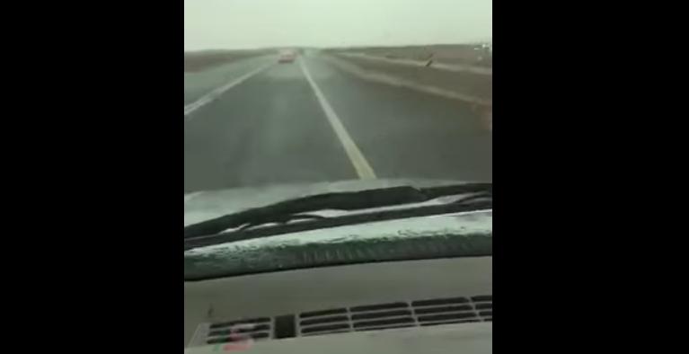 شاهد.. هوس تصوير المطر أودى بحياة قائد مركبة على الطريق