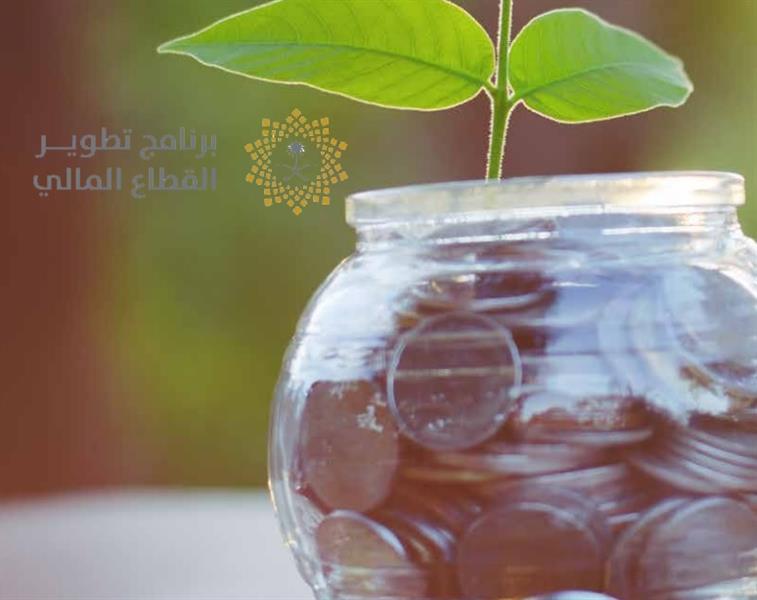 """""""الشؤون الاقتصادية"""" يعتمد برنامج """"تطوير القطاع المالي 2020"""".. اطلع على تفاصيله"""