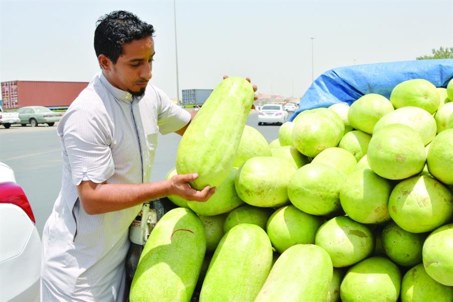 بائع الحبحب عامر.. أمنيات بمن يعينه على الزواج وأحلام بمحل يبيع فيه خضراواته بعيداً عن الشمس