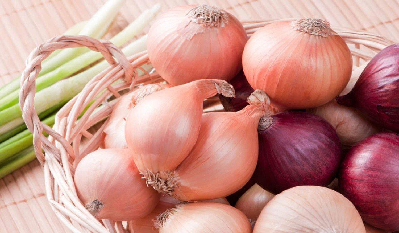 تعرَّف على الفوائد الصحية لـ«البصل»