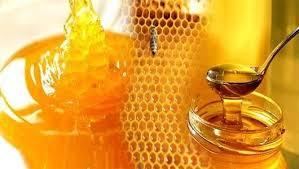 النمر يوضح.. هل يرفع العسل الطبيعي السكر في الدم؟