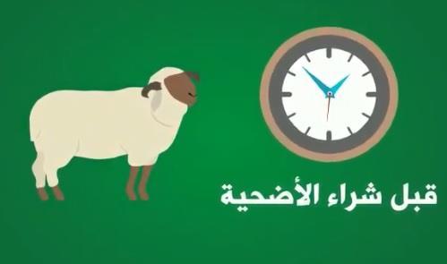 أمانة الرياض: 10 نصائح يجب معرفتها قبل الإقدام على شراء الأضحية