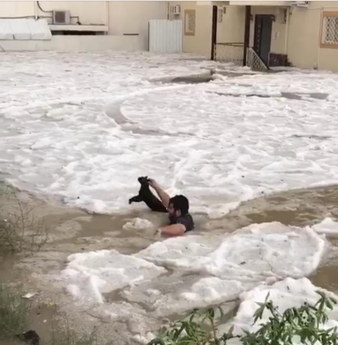 بالفيديو.. شاب يخاطر بحياته لإنقاذ قط محاصر في حي الرصراص