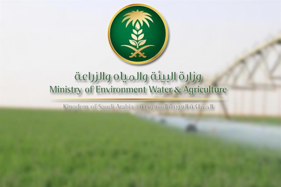 """""""البيئة والمياه"""": عدادات لأكثر من 148 ألف بئر بالمملكة لمراقبة وتنظيم الاستهلاك"""
