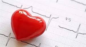 دراسة ترصد أثر الوزن على صحة القلب