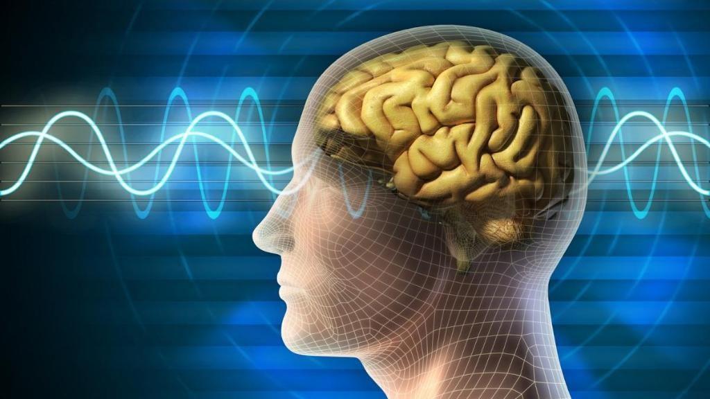 """ابتكار ثوري .. جهاز جديد يمكنه """"تحميل"""" المعلومات لدماغك"""