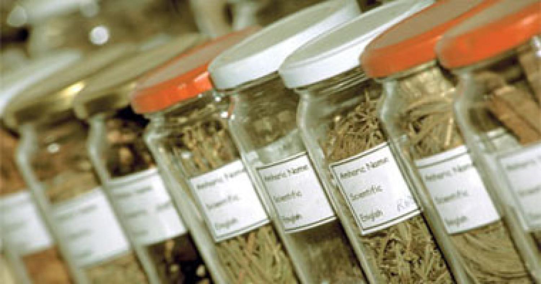 «الطب البديل»: استخدام الأعشاب مع الأدوية الحديثة خطر في هذه الحالة