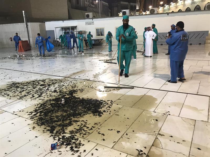 """فيديو..""""شؤون الحرمين"""" تخصص 200 عامل لتطهير المسجد الحرام من الحشرات"""