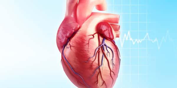 خطران يهددان بأمراض شرايين القلب