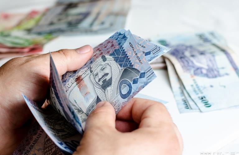 تعرف على أبرز الصعوبات المالية التي واجهت السعوديين خلال 2018