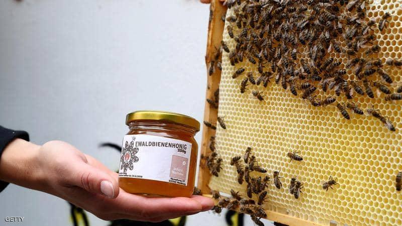 """نصائح ثمينة لمن يريدون """"العسل الأكثر فائدة"""""""