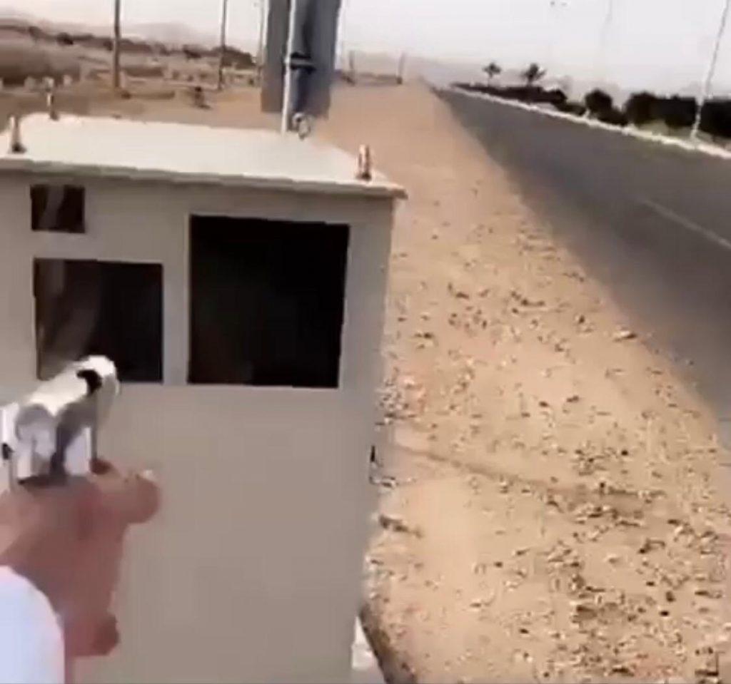 """شرطة مكة تلاحق """"مُطلق النار"""" على """"ساهر"""""""
