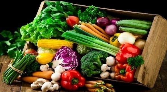 """هل النظام الغذائي النباتي أفضل للجسم ويطيل العمر ويحصن من الجلطات؟ """"النمر"""" يجيب (فيديو)"""