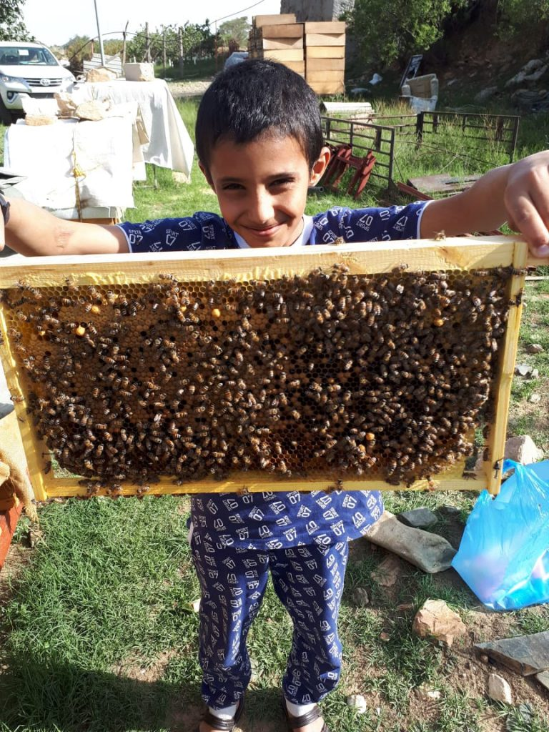 انطلاق مهرجان العسل الأول بمحافظة ميسان
