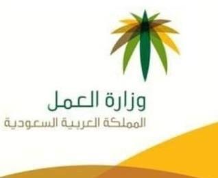 """""""العمل"""": 45 مبادرة لدعم قطاع التنمية وتمكين المواطن وبناء المجتمع"""