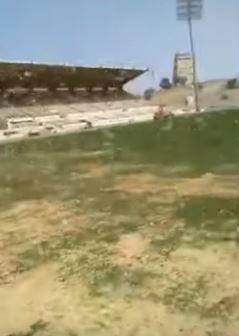 فيديو.. هجوم كميات كبيرة من الجراد على ملعب المحالة في أبها وتآكل العشب