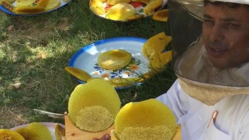 مواطن يروي قصة احترافه تربية النحل منذ 50 عاماً