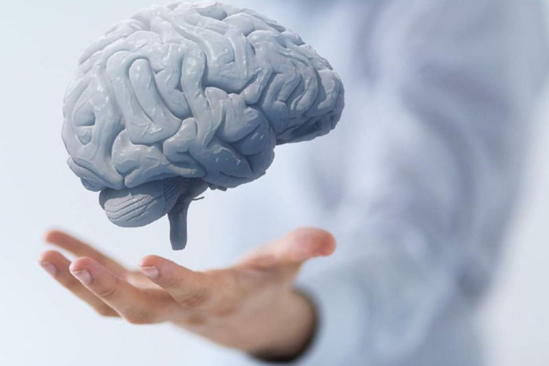 تعرّف على أهم الأطعمة الضرورية لتنشيط الدماغ