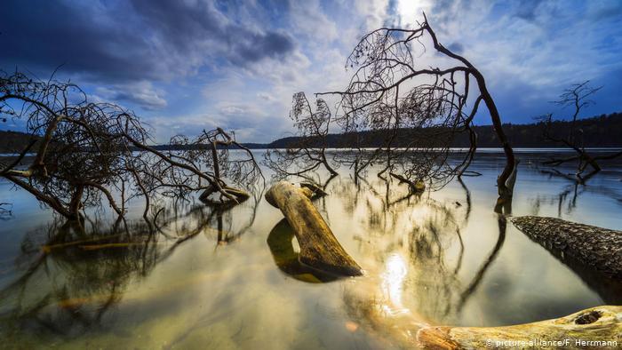 دراسة: الماء ليس دليلاً على وجود كائنات حية