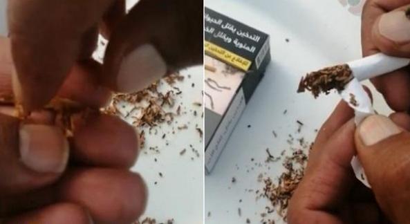 """نشارة خشب داخل السجائر الجديدة.. وموثق المقطع """"هذا سم واللي يشربه غلطان""""!"""