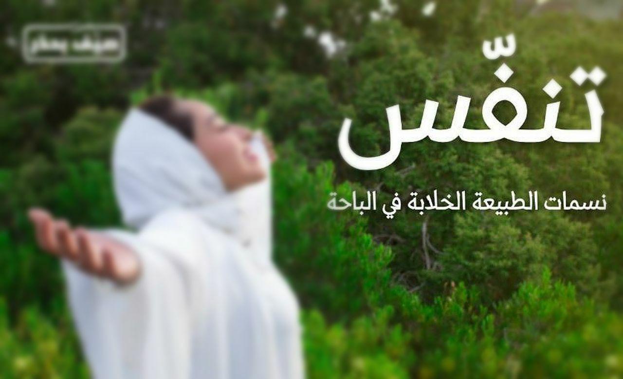 """""""هيئة السياحة"""" تطلق موسم صيف السعودية """"تنفس"""".. عبر 10 وجهات سياحية"""